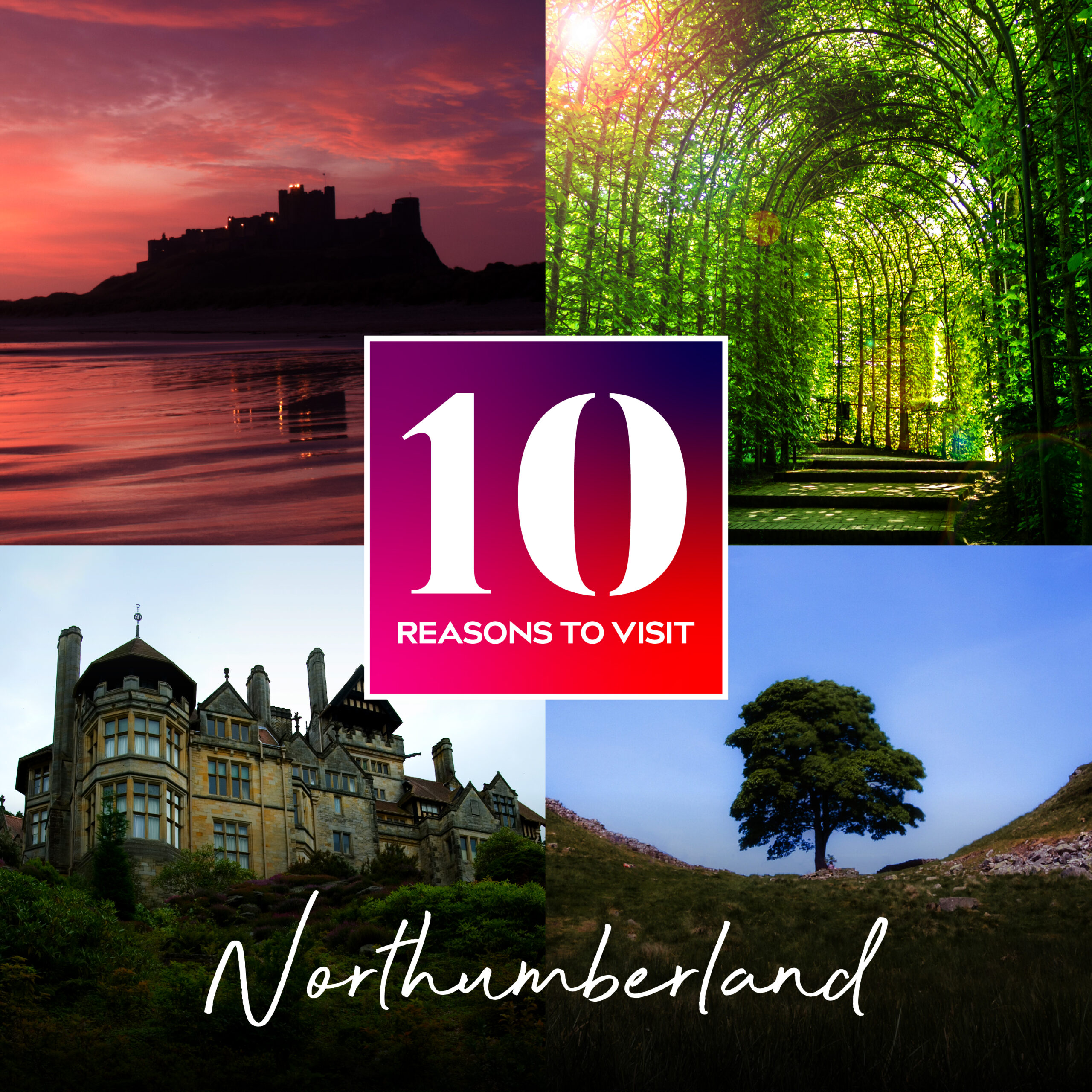 10 Reasons Why Northumberland Should Be On Your Staycation List in 2021